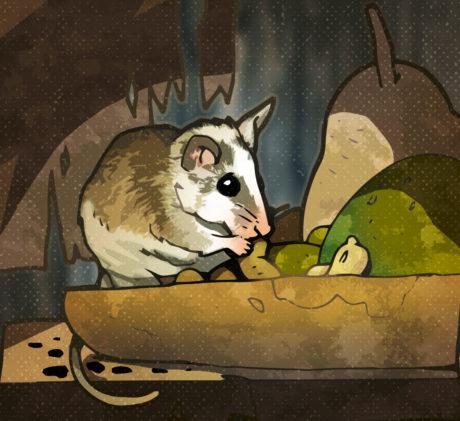 infezione della pelle di ratto
